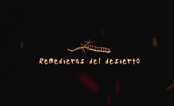 motion_remedieras_450